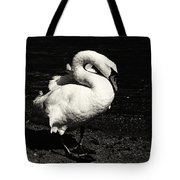 Evening Swan Tote Bag