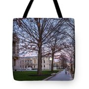 Evening Walk At Themuseum Of Fine Arts Tote Bag