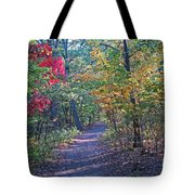 Evening Walk Thru The Woods Tote Bag