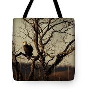 Evening Watch Tote Bag