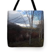Evening's Approach Tote Bag