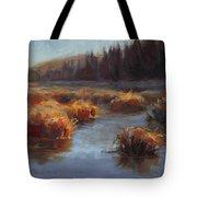 Ever Flowing Alaskan Creek In Autumn Tote Bag