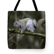Ever Get The Itch Tote Bag