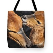 Ever Love Tote Bag