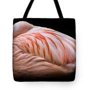 Ever Vigilant Tote Bag
