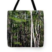 Everglade Magic Tote Bag