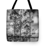 Everglades 0336bw Tote Bag