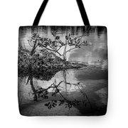 Everglades 0346 Tote Bag