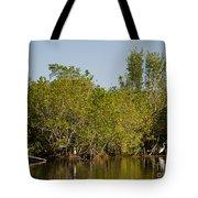 Everglades'  Egrets Tote Bag