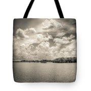 Everglades Lake 6919 Bw Tote Bag