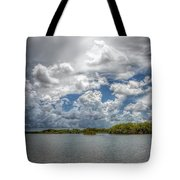 Everglades Lake 6919 Tote Bag by Rudy Umans