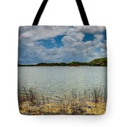 Everglades Lake 6930 Tote Bag by Rudy Umans