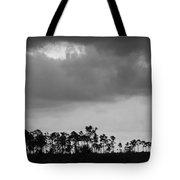 Everglades No.5  Tote Bag