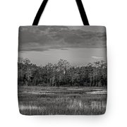 Everglades Panorama Bw Tote Bag