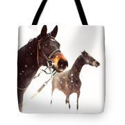 Everyone Has A Dream Tote Bag by Jenny Rainbow
