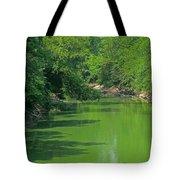 Everywhere Green Tote Bag