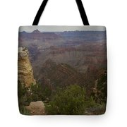 Evolution Of Nature At The Grand Canyon Tote Bag