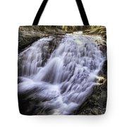 Evolution Waterfall Tote Bag