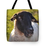 Ewe Bet I'm Cute Tote Bag