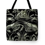 Examples Of Decapoda Kunstformen Der Natur Tote Bag by Ernst Haeckel