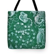 Examples Of Siphonophorae Tote Bag