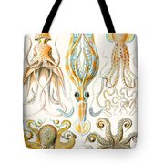 Examples Of Various Cephalopods Tote Bag