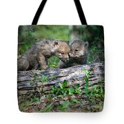 Exchange Of Confidential Information Tote Bag