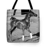 Exercising Horse Bw Tote Bag
