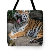 Exhausting Day Tote Bag