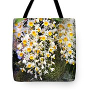 Exotic Aerides Tote Bag