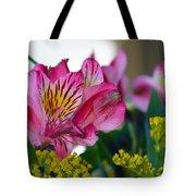Exotic Pink Tote Bag