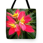 Exotic Red Flower Tote Bag