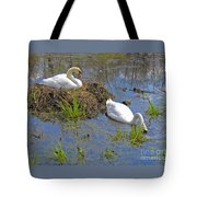 Expectant Tote Bag