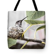 Expectant Mother Tote Bag