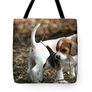 Exploring Beagle Pups Tote Bag