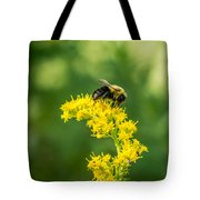 Exploring Goldenrod 2 Tote Bag