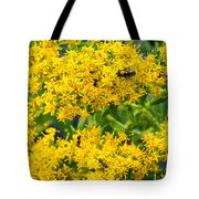 Exploring Goldenrod 5 Tote Bag