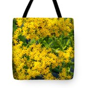 Exploring Goldenrod 6 Tote Bag