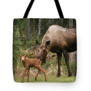 Exploring With Mom Tote Bag