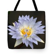 Exquisite Lavender Waterlily Tote Bag