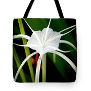 Exquisite Spider Lily Tote Bag
