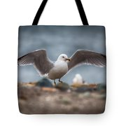 Extended  Tote Bag