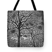 Extreme Contrast Bare Trees During Winter Photograph Tote Bag