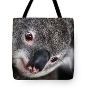Eye Am Watching You - Koala Tote Bag