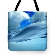 Eye Catcher In Snow Tote Bag