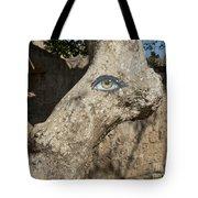 Eye Eye Tote Bag
