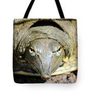 Eye Liner Turtle 8494 Tote Bag