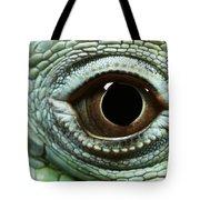 Eye Of A Common Iguana Iguana Iguana Tote Bag