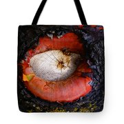 Eye Of Madrone Tote Bag