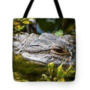 Eye Of The Alligator Tote Bag